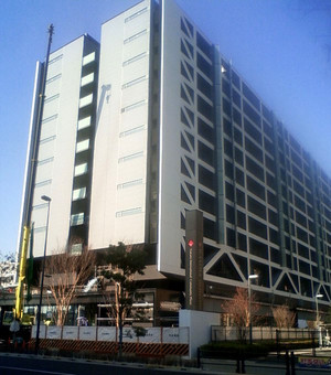 Wasedau