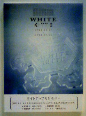 White_kitt1